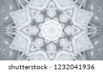 gray kaleidoscope patterns.... | Shutterstock . vector #1232041936