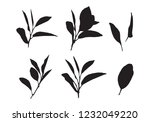 graphic leaves  vector | Shutterstock .eps vector #1232049220