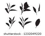 graphic leaves  vector | Shutterstock .eps vector #1232049220