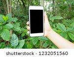 hand holding smartphone at... | Shutterstock . vector #1232051560