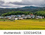 View Of Rural Dai Village In...