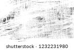 brush stroke and texture.... | Shutterstock . vector #1232231980
