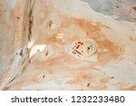 wooden texture as background | Shutterstock . vector #1232233480