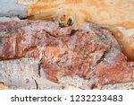 wooden texture as background | Shutterstock . vector #1232233483