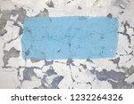 ... | Shutterstock . vector #1232264326