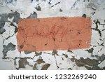 ... | Shutterstock . vector #1232269240