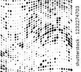 the texture of halftone black... | Shutterstock .eps vector #1232274703