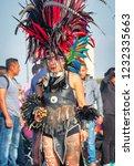 mexico city  mexico   december... | Shutterstock . vector #1232335663
