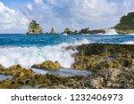 pointe des chateaux  grande... | Shutterstock . vector #1232406973