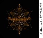 geometry mandala with stylized... | Shutterstock .eps vector #1232442709