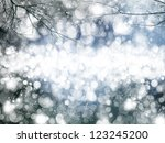 diffuse background  winter... | Shutterstock . vector #123245200