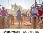 cowboys waiting in holding area ... | Shutterstock . vector #1232490409