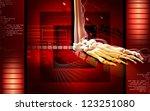 digital illustration of  leg... | Shutterstock . vector #123251080