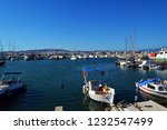 bay in the aegean sea with...   Shutterstock . vector #1232547499