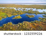 aerial shot of yelnya swamp ... | Shutterstock . vector #1232559226