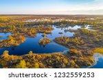 aerial shot of yelnya swamp ... | Shutterstock . vector #1232559253
