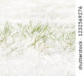 field covered with snow.... | Shutterstock . vector #1232569276