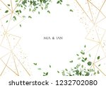 herbal minimalistic horizontal... | Shutterstock .eps vector #1232702080