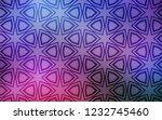 dark pink  blue vector layout... | Shutterstock .eps vector #1232745460