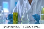 scientist looking at test tube... | Shutterstock . vector #1232764963