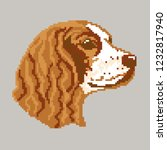 dog breed red english cocker...   Shutterstock .eps vector #1232817940