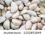 fresh garlic cloves and bulb... | Shutterstock . vector #1232851849