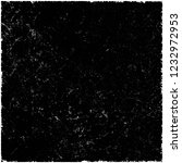 texture black and white | Shutterstock . vector #1232972953