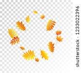 oak  maple  wild ash rowan... | Shutterstock .eps vector #1233022396