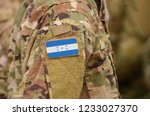 honduras flag on soldiers arm.... | Shutterstock . vector #1233027370