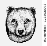 sketch of bear. hand drawn... | Shutterstock .eps vector #1233030073