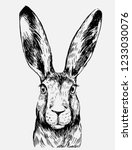 sketch of hare. hand drawn... | Shutterstock .eps vector #1233030076