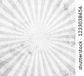 white and gray sunburst vintage ... | Shutterstock . vector #1233038656