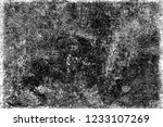 the grunge texture black and... | Shutterstock . vector #1233107269