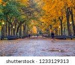 central park mall walkway... | Shutterstock . vector #1233129313