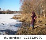 autumn forest  late fall season.... | Shutterstock . vector #1233129370