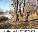 autumn forest  late fall season.... | Shutterstock . vector #1233129400