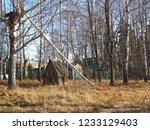 autumn forest  late fall season.... | Shutterstock . vector #1233129403