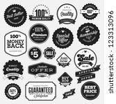 set of badges and stickers for... | Shutterstock .eps vector #123313096