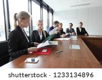 business team working with... | Shutterstock . vector #1233134896
