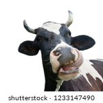 funny cow  isolated on white... | Shutterstock . vector #1233147490