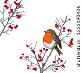 robin. hand drawn vector... | Shutterstock .eps vector #1233190426