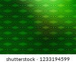 light green vector texture with ...   Shutterstock .eps vector #1233194599
