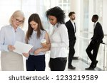 mature team leader and young... | Shutterstock . vector #1233219589