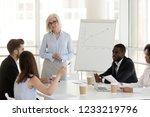 smiling mature coach mentor... | Shutterstock . vector #1233219796