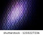 dark pink  blue vector...   Shutterstock .eps vector #1233227236