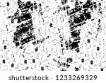 grunge overlay layer. abstract... | Shutterstock .eps vector #1233269329