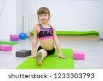 st petersburg  russia  6.11... | Shutterstock . vector #1233303793
