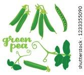 vector illustration of green... | Shutterstock .eps vector #1233355090