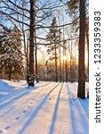 beautiful winter sunset near... | Shutterstock . vector #1233359383