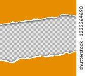 torn paper pieces background...   Shutterstock .eps vector #1233364690